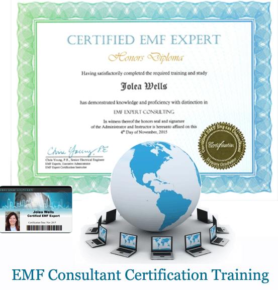 EMF Consultant Certification Training Diploma