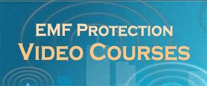 Self-Guided EMF Detection and Protection Training